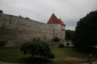 Muralla de Tallín